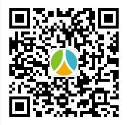 2020年德阳市事业单位招聘考试公告(334名)