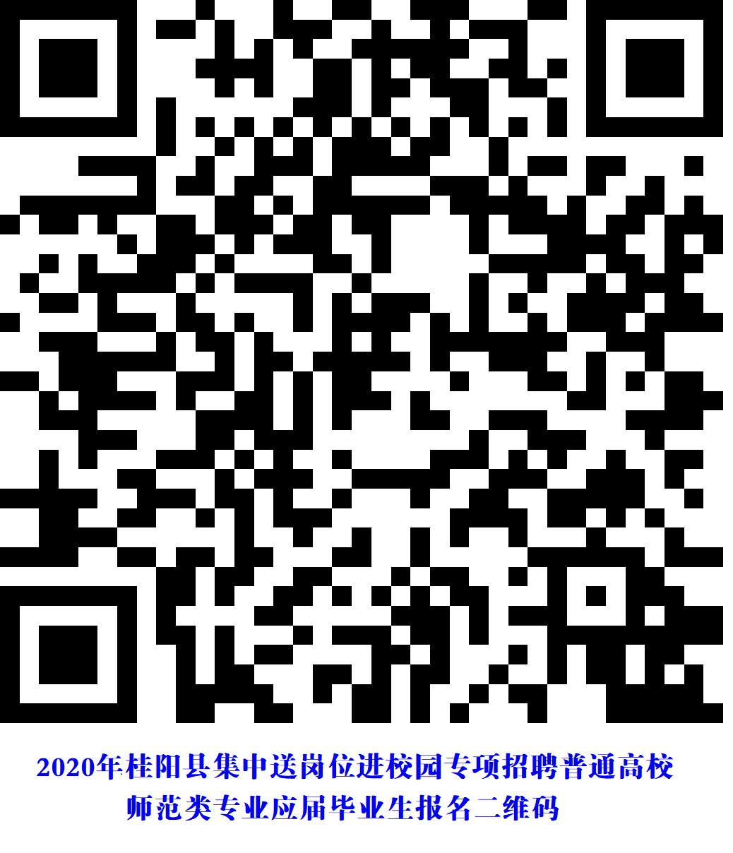 2020年郴州市桂阳县集中送岗位进校园专项招聘普通高校师范类专业应届毕业生公告